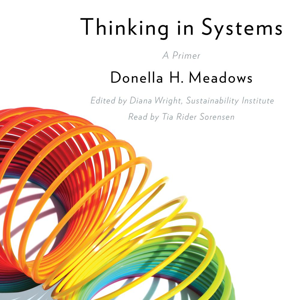 Donella Meadows Thinking in Systems Audiobook and Ebook in one on xigxag